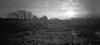 First sunrise (Rosenthal Photography) Tags: 6x12 ff120 asa125 lochkamera bnw schwarzweiss anderlingen ilfordfp4 20171202 familie pinhole mittelformat rodinal150 garten bw analog zeroimage612b dörfer siedlungen sun sunrise landscape nature mood rodinal field trees farm zero image 612b ilford fp4 fp4plus 40mm mediumformat f158 rollfilm
