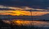 silhouet in the sunset (alice.frandsen) Tags: lakolk rømø solnedgang silhouet farver alicebjergfrandsen