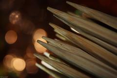 "MacroMondays ""Stick""- Toothpicks (traptiantiwary) Tags: toothpicks stick wooden macromondays theme macro macrophotography closeup bokeh background canon"