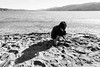 millerton point 1 (Adrienne Johnson SF) Tags: rollieortho25 úna 2017 declan millertonpoint pointreyes story documentary norcal family kids bw beach children 5minutes