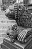 Bremen Cathedral (virtualwayfarer) Tags: bremen visitbremen germany europe european streetphotography streetsofbremen hanseaticleague hanseatic citybreak walkingtour deutsche hansa citycenter historiccenter bremencathedral cathedral bremerdom dom stpetridom bremensquare historic architecture patterns texture art detail detailwork lion stonelion nordictb citybreakgermanycitybreakbremen alexberger virtualwayfarer citybreakfromdenmark bestofbremen