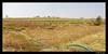 blue line ... (harrypwt) Tags: harrypwt nigeria africa savana bokkos grass reeds people samsungs7 s7 farm plateau paintinglike framed