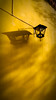cálida luz (explore) (Momoztla) Tags: mexico momoztla cdmx amarillo sombras luz arboles otoño tardio tarde