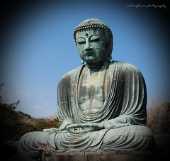 Daibutsu (Great Buddha). (natureflower) Tags: great buddha kōtokuin temple kamakura kanagawa prefecture japan bronze statue nationaltreasure daibutsu