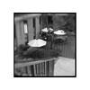 Courtyard and stairway (tomusan) Tags: film kodak400 trix browniehawkeye brownie blackandwhite bw stairway umbrellas courtyard square 120 mediumformat flippedlens