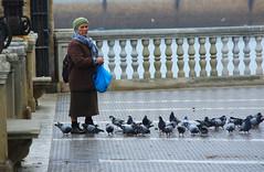Parque Genovese (hans pohl) Tags: espagne andalousie ca cadix personnes people oiseaux birds nature balustres