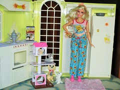 I love my pets (flores272) Tags: licca liccachan liccachancattower barbie barbiedoll barbieclothing barbiehouse foldupbarbiehouse toycat curvybarbie doll dolls toy toys