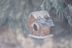 I am dreaming of a white Christmas, just like the ones I used to know... (Zara Calista) Tags: xmas christmas snow winter birdhouse light white grey pastel