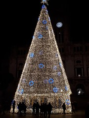 Christmas Tree in Porto, Portugal (sweetpeapolly2012) Tags: portugal cherry porto city christmas tree lights nighttime christmastree