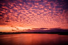 Summer sunset (lizcaldwell72) Tags: water ahuriri sky hawkesbay newzealand sunset napier light