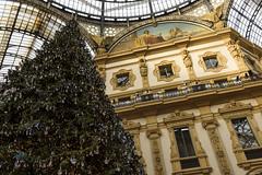 _DSC0047 (m.krema) Tags: milano lombardia italia it galleria vittorioemanuele albero natale dettaglio colore swarovski interno affresco architettura d750