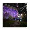 Winter time in Leuven (David Jonck) Tags: night davidjonck framed nikon winter ts city cityscape leuven christmas colours lights stad wintergarden 2017 xmas wintertuin longexposure stadhuis cityhall tiltshift kerstmis lightshow grotemarkt d850 architecture 24mm