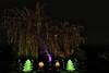 Saule pleureur de Noël - Christmas weeping willow (olivier_kassel) Tags: arbre tree willow saule christmas noël illumination hdr