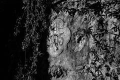 1905 (drugodragodiego) Tags: numbers pontecaffaro provinciadibrescia lombardia italy blackandwhite blackwhite bw biancoenero pentax pentaxk1 k1 pentaxdfa2470mmf28 hdpentaxdfa2470mmf28edsdmwr bagolino fontana