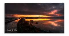 An Islandhill Tale (RonnieLMills) Tags: rough island islandhill sunrise dawn early morning reflections high tide comber newtownards county down northern ireland greatphotographers