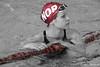 Landes 2017 Lightroom - Mannschaft (swimonline.de) Tags: dlrg landes landesmeisterschaften lifesaving rettungsschwimmen mannschaft badekappe swimcap swimming rescue arena speedo