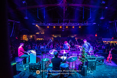Amanda Ann Platt and the Honeycutters 2017-12-15 (Asheville, NC) (David Simchock Photography) Tags: amandaannplattandthehoneycutters asheville christmastree davidsimchock davidsimchockphotography frontrowfocus mannafoodbank nikon northcarolina theorangepeel xmastree avl avlent avlmusic band concert drummer drums event image livemusic music musician performance photo photography usa