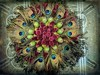 Circle of Green (clarkcg photography) Tags: green feathers peacock fruit red arrangement funshot gorgeousgreenthursday