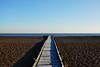 Lydd on Sea (richwat2011) Tags: octnovdec17 kent sea seaside seascape englishchannel coast coastline shore shoreline lade lyddonsea southcoast beach shingle nikon d200 18200mmvr boardwalk