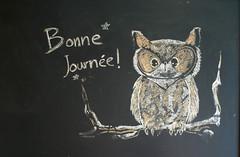 have a good day (wmpe2000) Tags: 2017 quebec montreal montréal canada montroyal park parc chalk chalkboard drawing owl bonnejournee