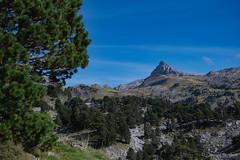 Iraty_5680 (lucbarre) Tags: col iraty basque france montagne ciel bleu montagnes pyrénées