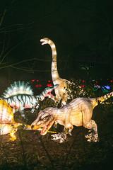 Wild Lights (Strangelove 1981) Tags: 2017 dublinzoo ireland wildlights zoo night lights glow light animals festival dinosaurs dinosaur stegosaurus trex