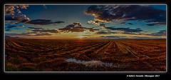 Ocàs a la marjal de Sueca 259 (Sueca's marsh in sunset  259) Sueca, la Ribera Baixa, València, Spain (Rafel Ferrandis) Tags: ocàs sueca ribera marjal núvols panorama eos5dmkii ef1635mmf4l hdr tardor