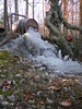 Ice flow (jakyle8701) Tags: winterice wintermorning entpond ice entman ent whiskeybarrelwaterfall flow iceflow amazing naturalwonder