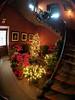IMG_20180107_113727.jpg (imfaral) Tags: biltmore christmas