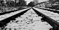 """Snow on the line!"" Line illusion at Chasewater heath station B&W (eucharisto deo) Tags: winter canock chase heath railway chasewater country park staffordshire snow station weather bw blackandwhite blackwhite bandw instantfave"