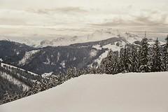 (Rastislav Durica) Tags: analog analogue film kodakgold200 canoneos500n landscape paysage alps