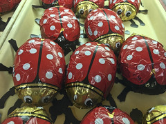 Delicious Bugs! (brucetopher) Tags: ladybug bug food cake candy dessert spotted spots red bugs treat sweet sweets bakery offering choices group bundle bunch collection mob crowd stampede gang infested