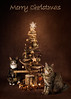...to all my lovely Flickr friends x (Jonathan Casey) Tags: christmas cats tree jonathan casey jonathancaseyphotography nikon d810 sigma 50mm f14 art
