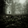 Dark fog I (Mathieu Calvet) Tags: pentax carré square k3 fineart fog da21mm da21 21 peur sombre fear brouillard