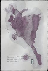 Arbeit 54 (Harald Reichmann) Tags: rotwein wein alkohol signatur kraft energie dynamik farbe blauburger r arbeit54 inspiration text information papier magie zauber