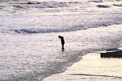 A Budding Oceanographer (radiorocky) Tags: hampton newhampshire nature beach northbeach newengland gulfofmaine sea seacoast seashore ocean water tide waves child surf