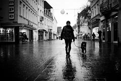 Rainy days with nicole & sweety linus :) (AlphaAndi) Tags: monochrome mono menschen menschenbilder leute people personen portrait peoples portraits urban trier tiefenschärfe tier hund dof deepoffield dog drausen availablelight animals architecture fullframe face vollformat city closeup sony streetshots streets schwarzweis streetshooting streetportrait street sonya7ii sw streetphotographie strase strasenleben streetlife streetszene blackandwhite blackwhite bw bokeh bokehlicious