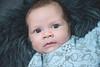 Cohlin (evizzlandin) Tags: baby babyphotography babyphotoshoot bebis bebisfotografering newborn newbornphotographer infant cute child cohlin fotografering fotografevalandin fotograf photographer babyboy