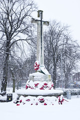 The Cenotaph, Bloxwich 10/12/2017 (Gary S. Crutchley) Tags: snow winter blizzard bloxwich blakenall uk great britain england united kingdom urban town townscape walsall walsallflickr walsallweb black country blackcountry staffordshire staffs west midlands westmidlands nikon d800 raw