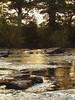 Golden Usk (david.hogan7) Tags: landscape river stream summer sunlight rushes moody golden reflections rocks salmon fishing usk wales sunset ngc