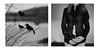 """Mamam, souviens-toi....""  (""Mother, remember..."") (l'imagerie poétique) Tags: limageriepoétqiue poeticimagery portfolio mediumformatfilm tmax400 inspiredbymusic ironandwine grief chagrin transition death birth motherhood bronicasqa"