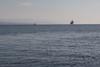 171212-N-OW019-300 (SurfaceWarriors) Tags: usspearlharbor pearlharbor lsd52 amphibiousdocklandingship navy deployment americaamphibiousreadygroup ama arg powerprojection amaarg aarg lcac landingcraft aircushion assaultcraftunit5 acu5 usssandiego lpd22 operations welldeck gulfofaqaba