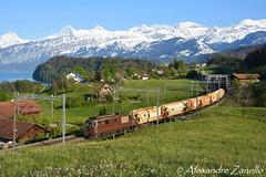 Re 425 181, Einigen (CH) (Alexandre Zanello) Tags: re425 re44 bls cargo einigen salzzug berneroberland thunersee jungfrau mönch eiger suisse schweiz svizzera svizra switzerland