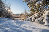 First snow (Havoc315) Tags: sony a7riii 12244 sony1224mmf4g 1224 winter snow westchester sunrise