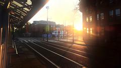 I'm just waiting for the tram (André Felipe Carvalho) Tags: amsterdam domingo sunday morning manhã golden hour holanda