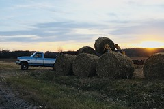 Hay (kglaze9) Tags: hay farmtown farmer sunset pickup truck openspaces landscape yellow work local canon righttimerightplace gravelroad dirtroad community lucky freshair country countrygirl hometown favorite downtoearth basics tractor weekend tree bushel land
