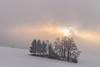 magic light (zora_schaf) Tags: dietramszell pastell zoraschaf bäume magiclight lichtstimmung snow schnee landschaft landscape peretshofen winter peretshofenerhöhe