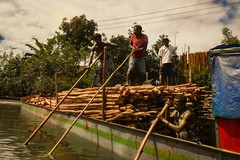 Timber Barge (Rod Waddington) Tags: africa afrique madagascar malagasy barge boat poles men timber water trees tamatave channel outdoor candid