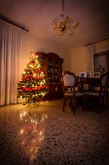 DSC_6726 (calosPico88) Tags: alberodinatale albero natale christmas