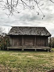 Slave quarters on the Whitney Plantation (mooshrimp) Tags: museum iphone7 iphone sugarcane cane sugar historic history building wooden wood slaves slave slavery rural louisiana neworleans southern south plantation